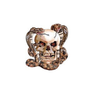 Sweat snake and skull