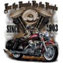 Sweat à capuche zippé american iron biker...