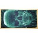Motley Tube blue skull