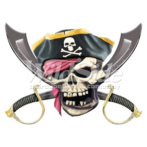 T shirt enfant jolly roger