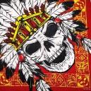 Bandana indian skull